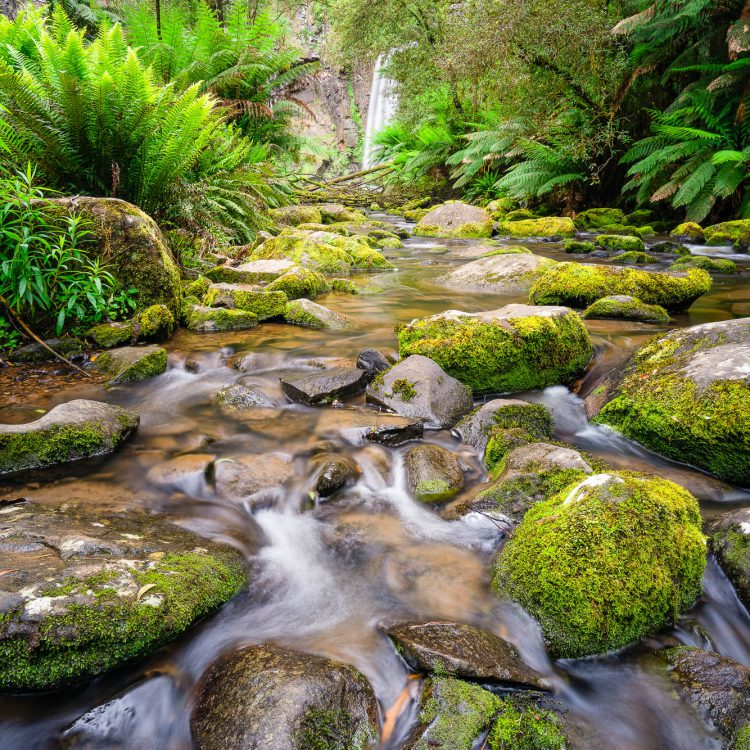 Landscape photography of a Hopetoun Falls waterfall in the Otway's, Great Ocean Road